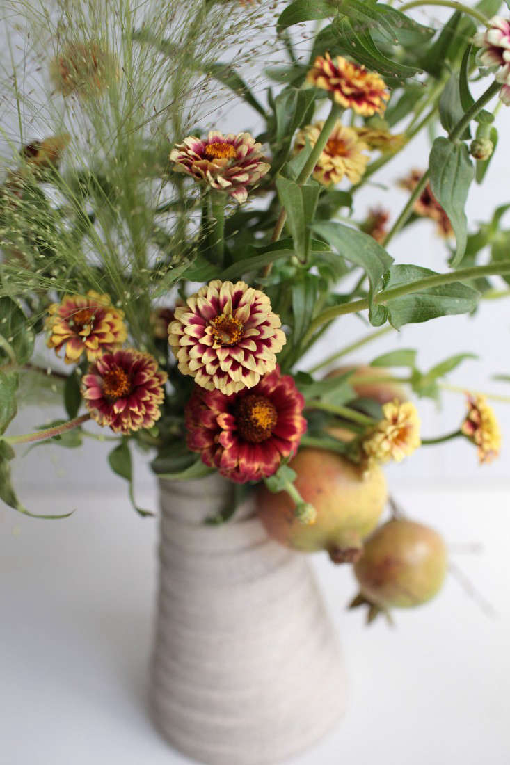 Zinnias are a fast-growing plant, one of the quickest to grow from seed to flower (most will bloom in from 75 to 90 days after germination).
