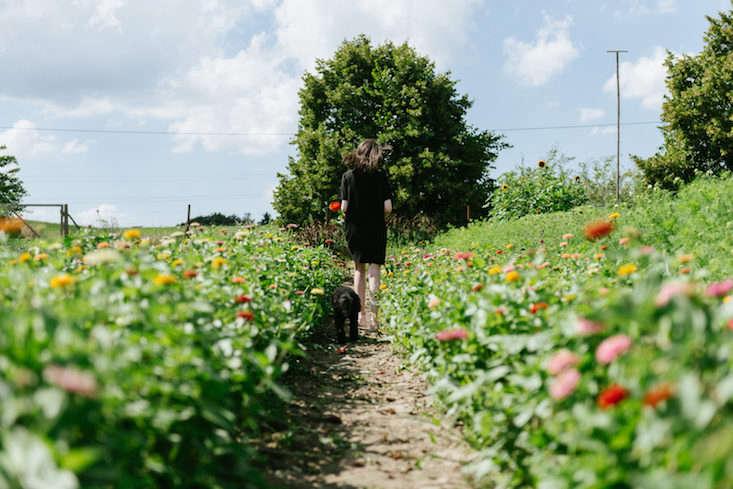 Freunde von Freunden Ruby Barber on gardenista current obsessions
