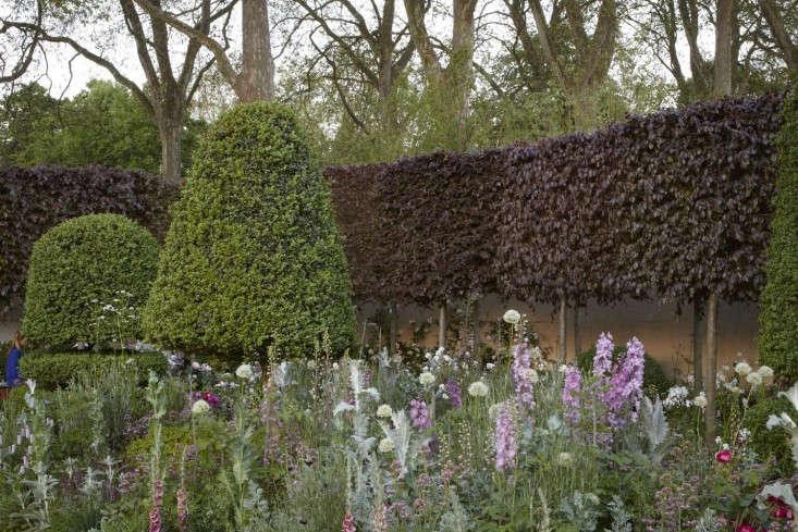 arne-maynard-chelsea-beech-topiary