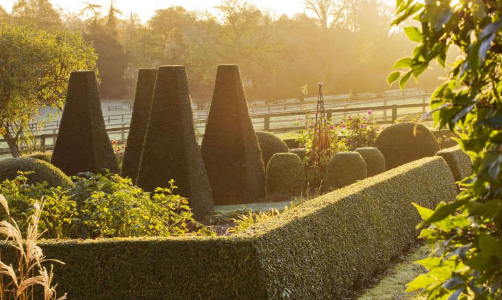 At Pettifers Garden in Oxforshire, a clipped boxwood hedge surrounds clipped yew topiaries. Photograph by Clive Nichols.