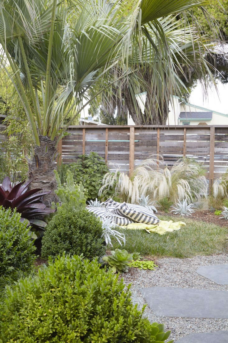 At her home in Berkeley, California, landscape designer Flora Grubb relies on a bulky palm to create a layer of privacy in the garden. See more in Landscape Designer Visit: At Home with Flora Grubb in Berkeley, CA.Photograph byCaitlin Atkinson.