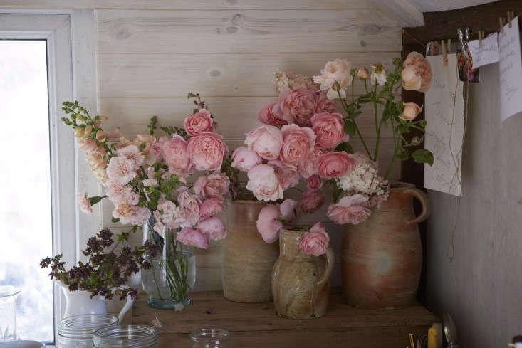 florist-studio-pink-roses-vase-tamara-hall-britt-willoughby-dyer-BN2A0189