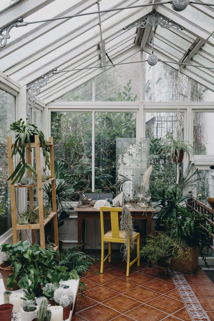 house-of-plants-book-greenhouse-bookshelves