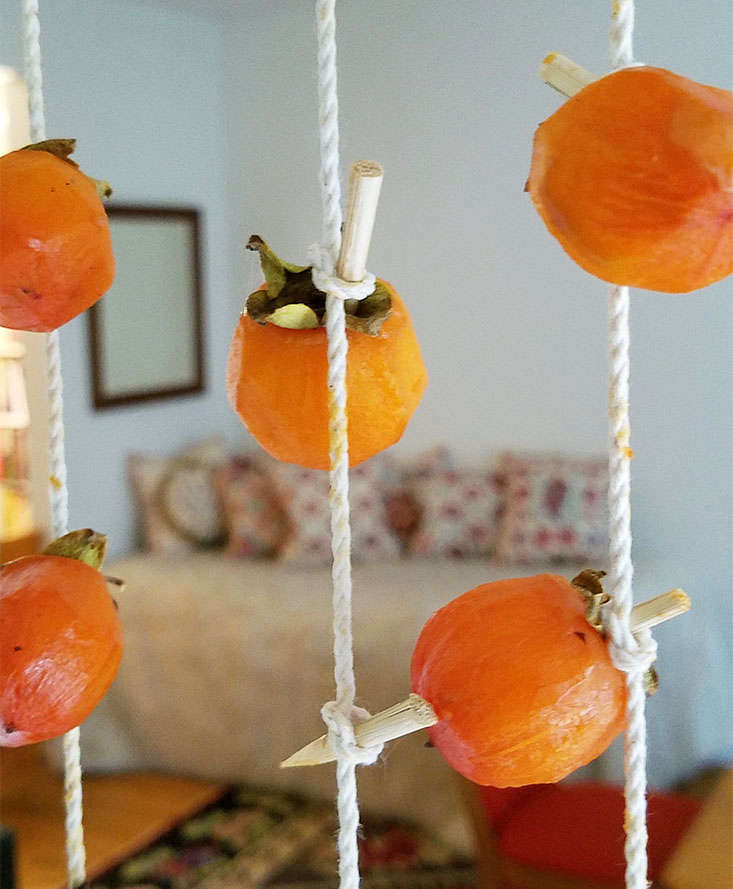 One way of preserving a bountiful persimmon harvest is by drying them to make the Japanese (as well as Chinese and Korean) delicacy known as hoshigaki. Peel the persimmons (this is a sticky process, best achieved with a potatopeeler) and suspend them from a string until dry. Nancy Singleton Hachisu&#8\2\17;sPreserving the Japanese Way (\$\26.59 on Amazon) details the method.