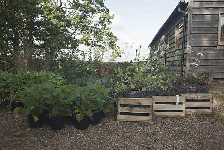 James Horner's flower studio, East Sussex