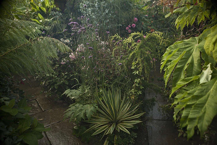 jim-powell-dixter-exotic-garden-8