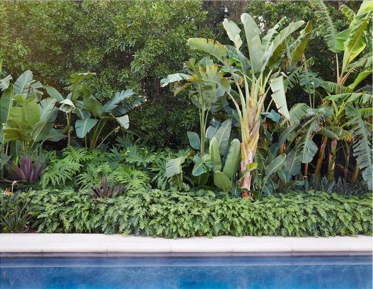 kronish_house_15_neutra_asla_marmol-radziner_gardenista