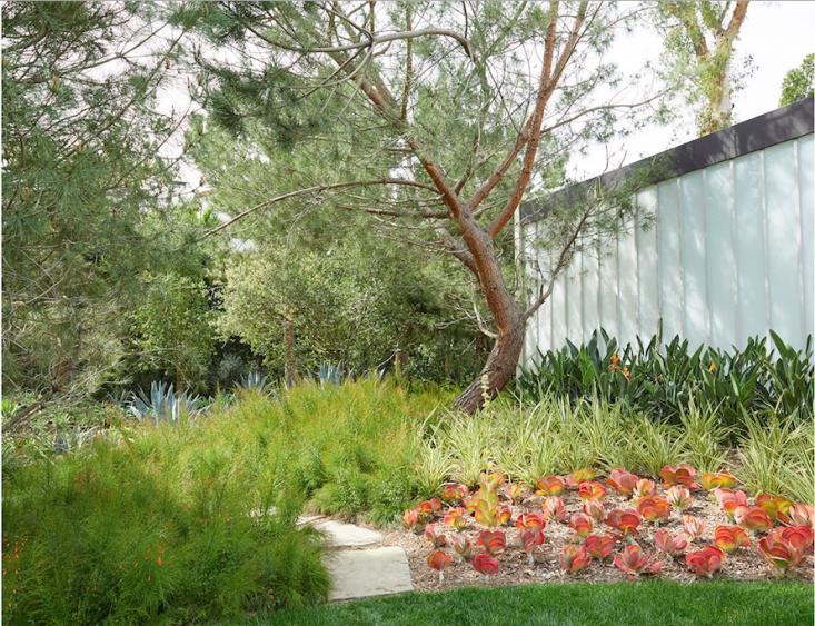 kronish_house_8_neutra_asla_marmol-radziner_gardenista