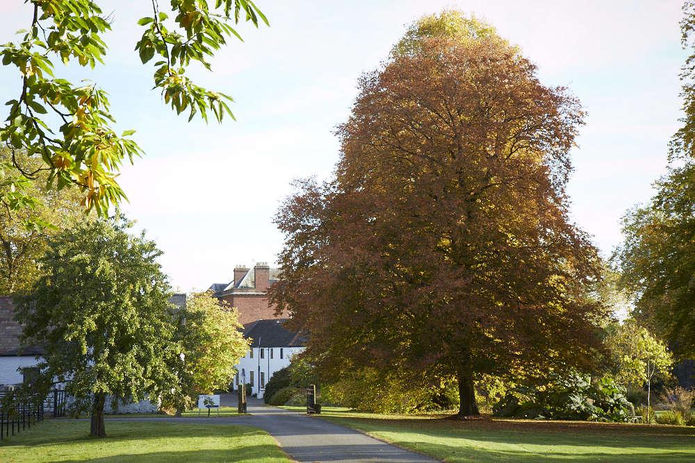 llanover-garden-britt-willoughby-dyer-BN2A0406