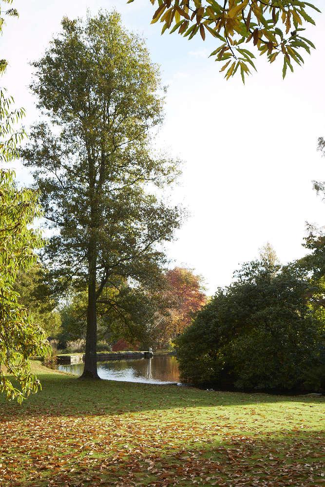 llanover-garden-britt-willoughby-dyer-BNA0001