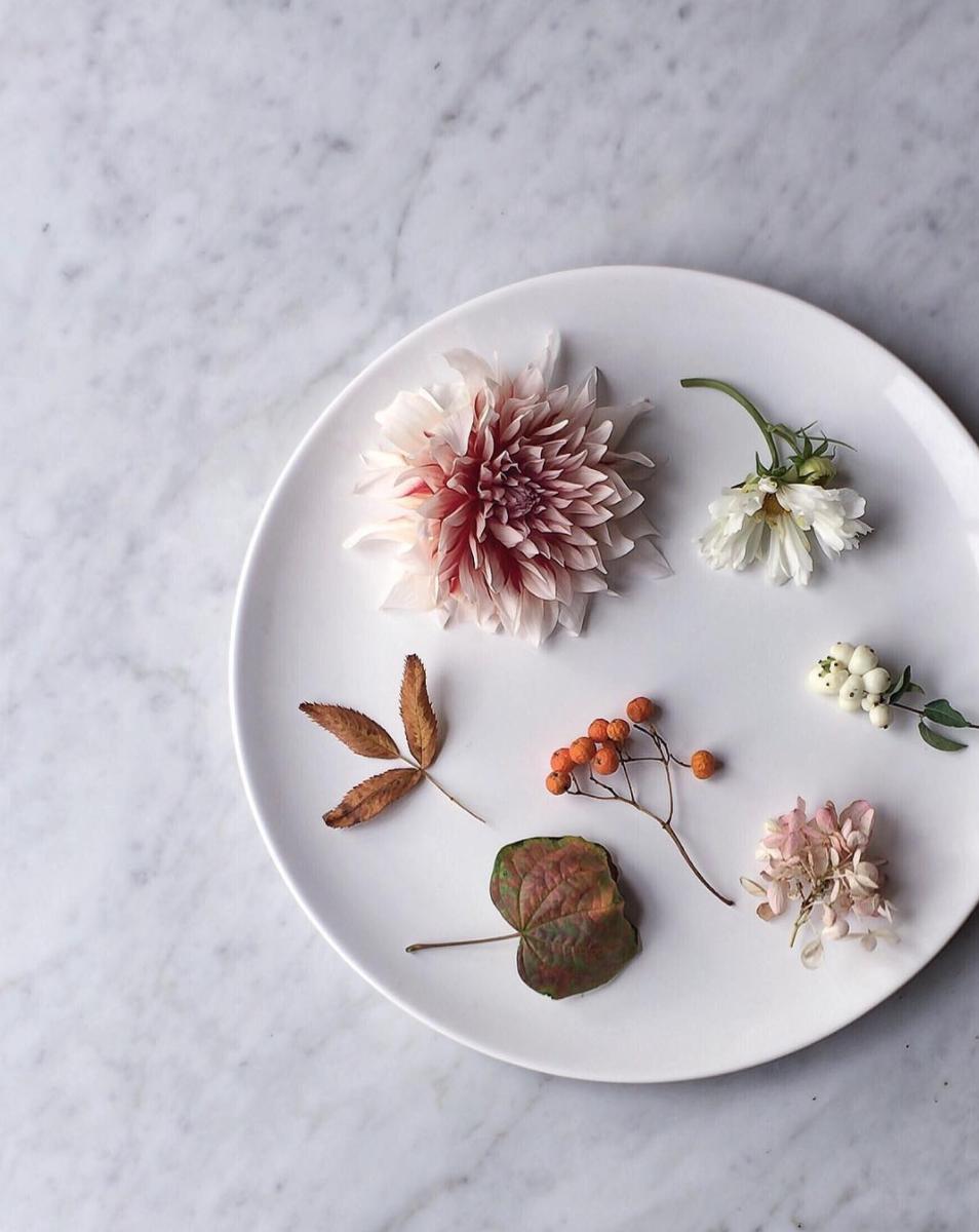 Yukiko Masuda's Autumn Palette Photo on her Nonihana Instagram
