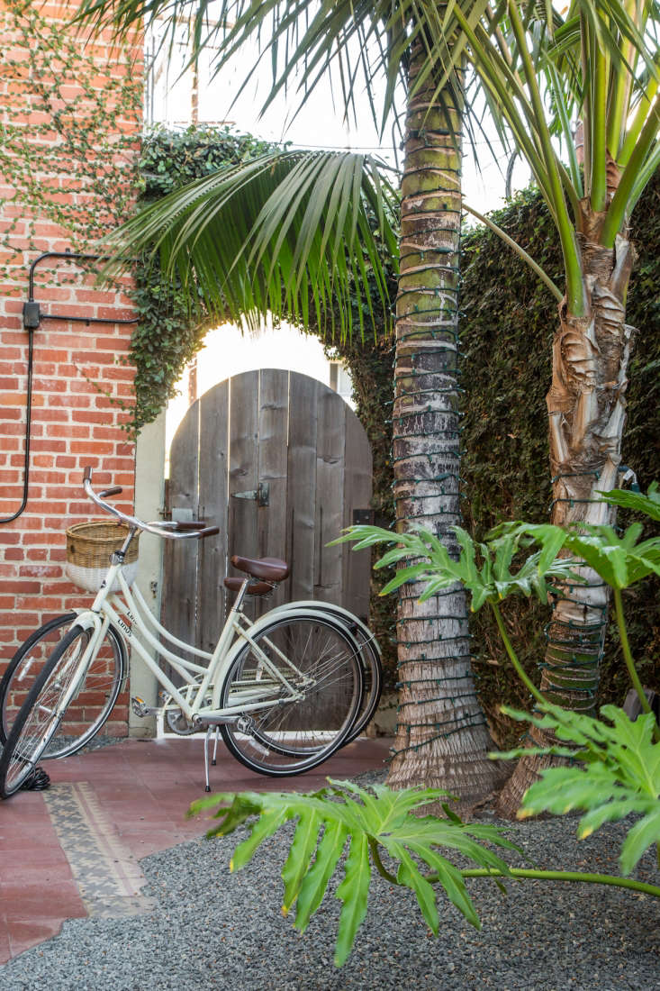 Wandering in the hotel garden at the Palihouse Santa Monica, the first thing Meredith noticed was an unusual mix of plants: tropical palms, cypress trees, and prehistoric-looking ferns. See more at Enchanted Garden: Whimsy and Wit at Palihouse. Photograph by Bethany Nauert.