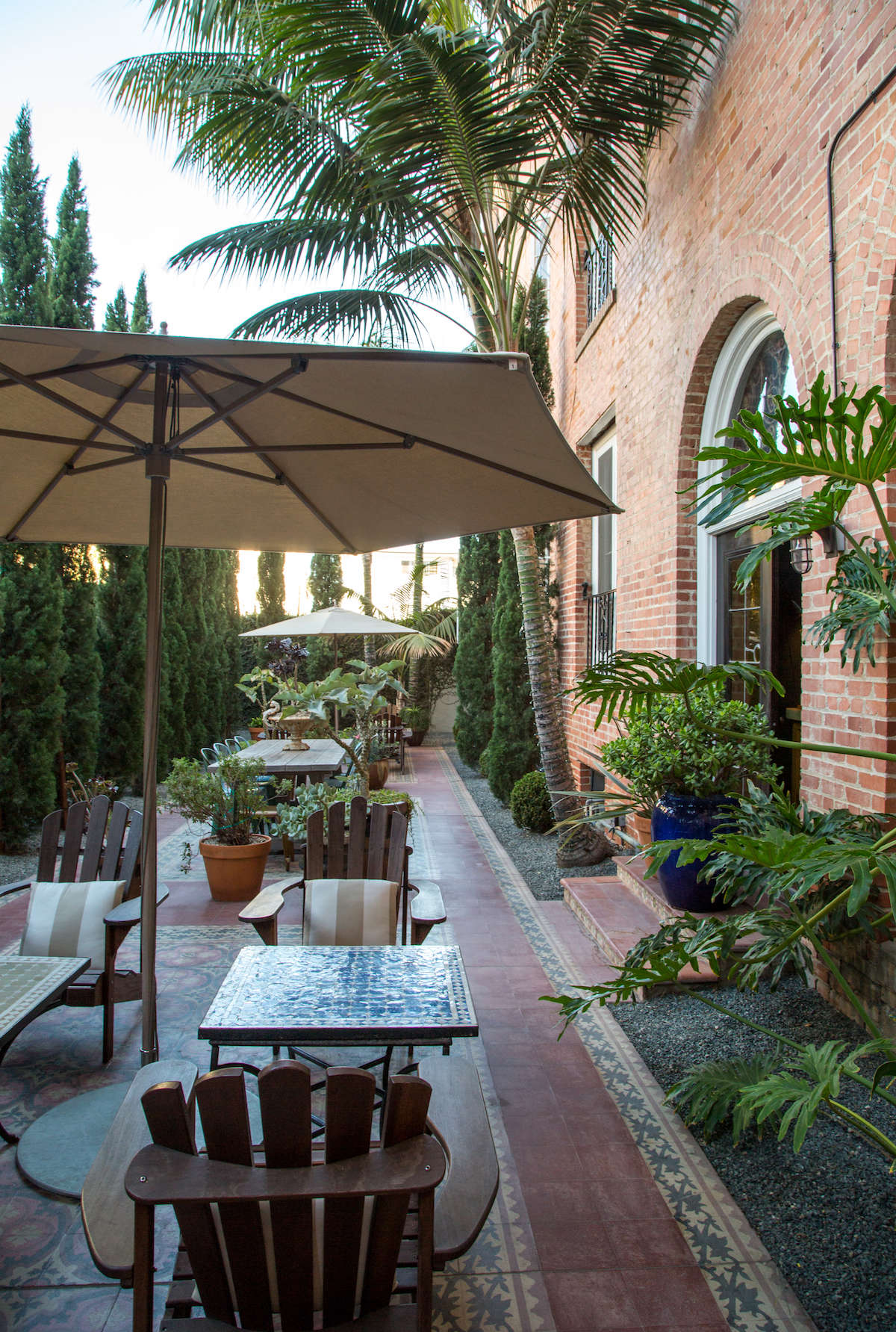 Palm trees and ferns in patio courtyard garden in Santa Monica