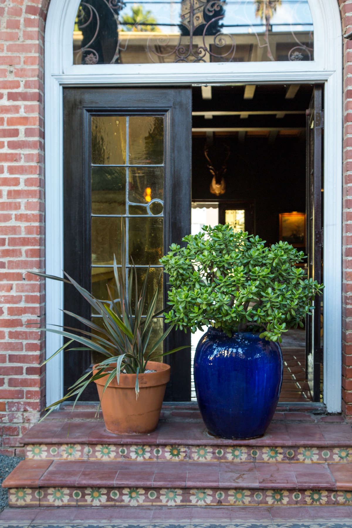 Potted container plants in front of door on outdoor patio