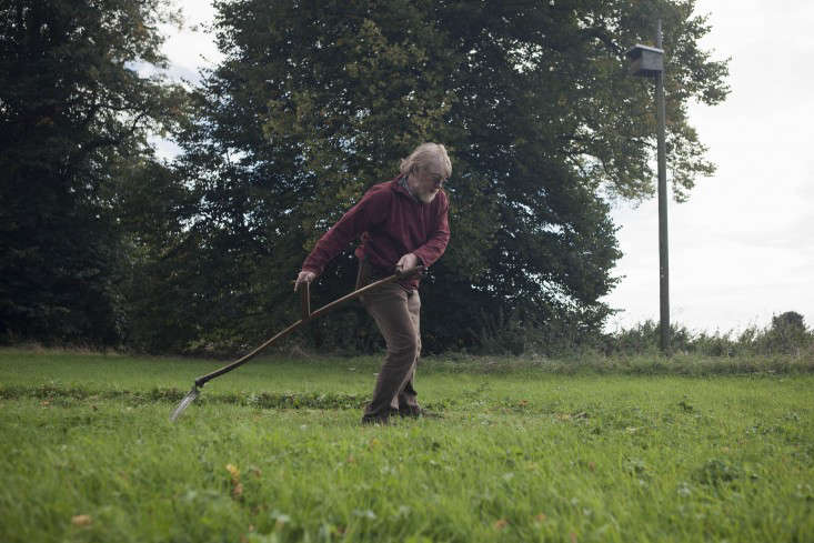 Scything a meadow and making hay in East Anglia, UK