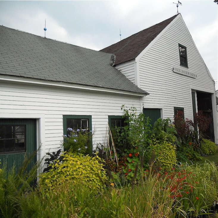 Snug Harbor Farm on Gardenista Current Obsessions