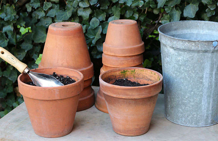 Every year I grow annuals in small terra cotta pots to add spots of color to my garden. Now is the time to empty and clean the pots and stack them upside down.