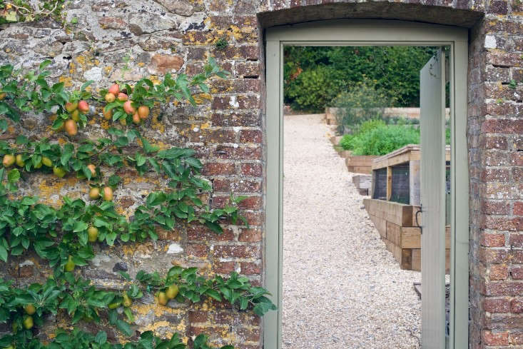 At the Pig at Combe, a boutique hotel in the south of England, espaliered fruit trees grow against a brick wall. Photograph by Will Venning.