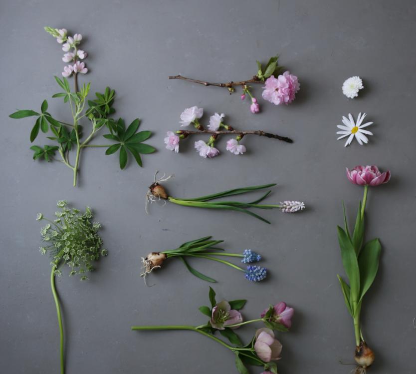 Flowers on Grey Background by Yukiko Masuda