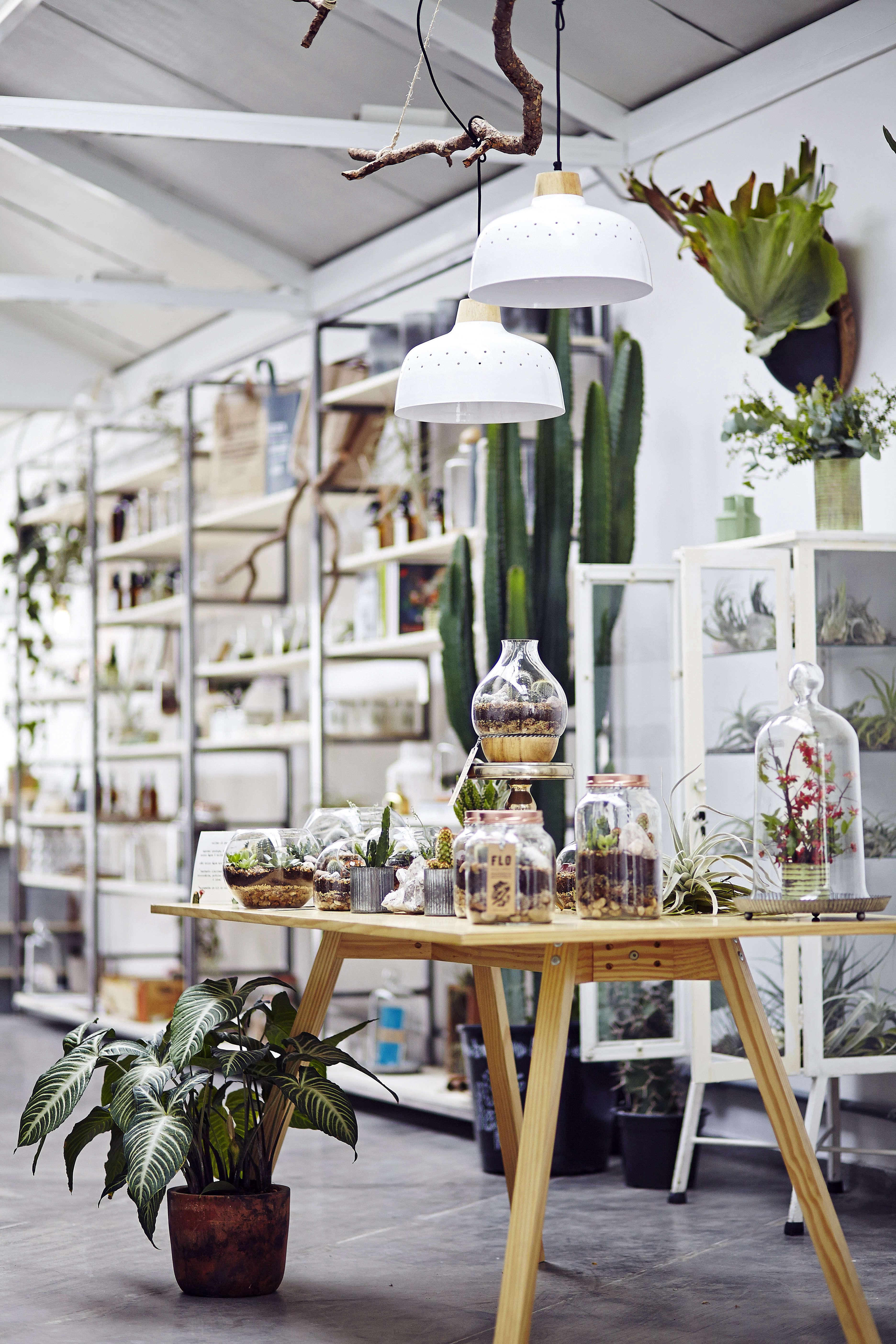 Evergreen Book Atelier Botânico Workshop, Photo by Karen Suehiro