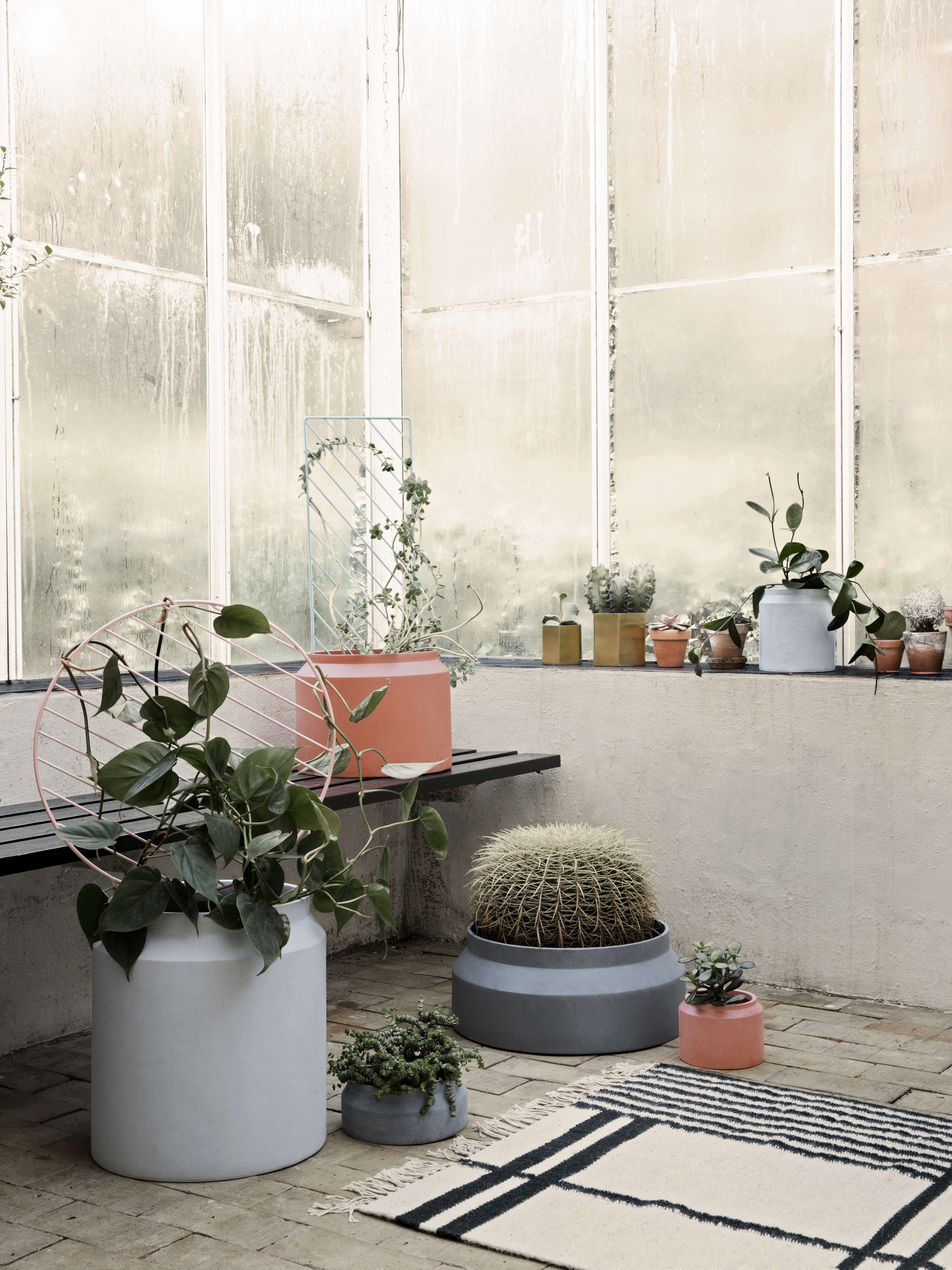 Evergreen Book Plants by Ferm Living