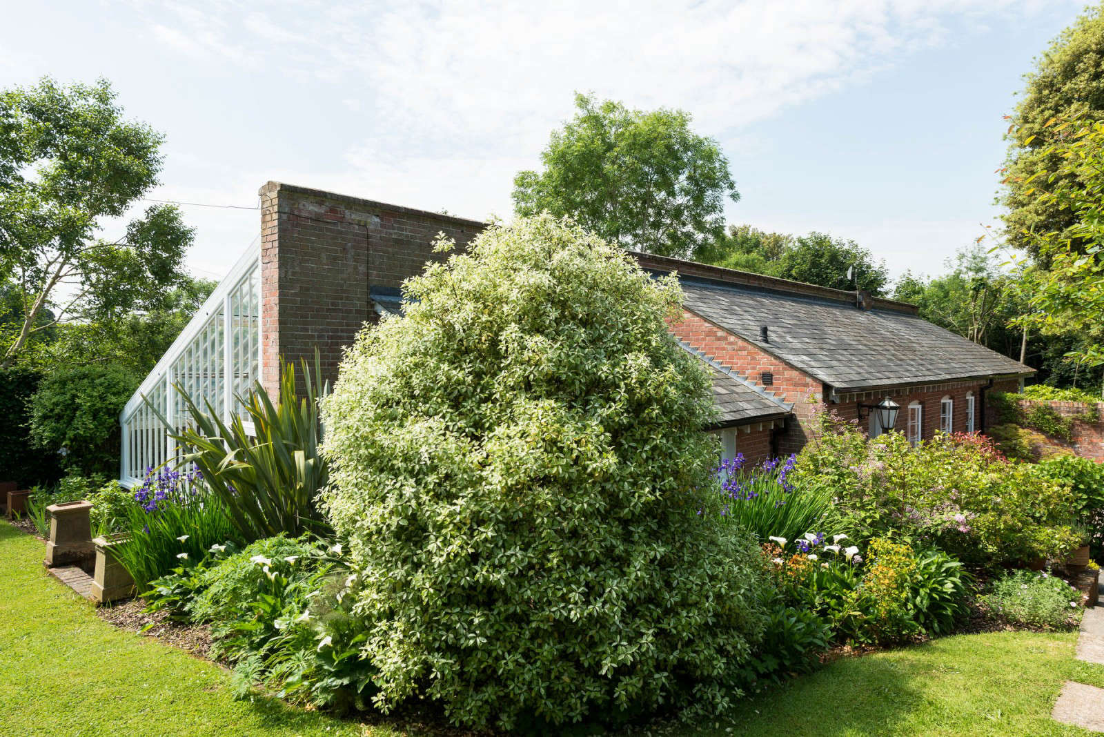 greenhouse-conversion-kent-themodernhouse-flower-beds-7