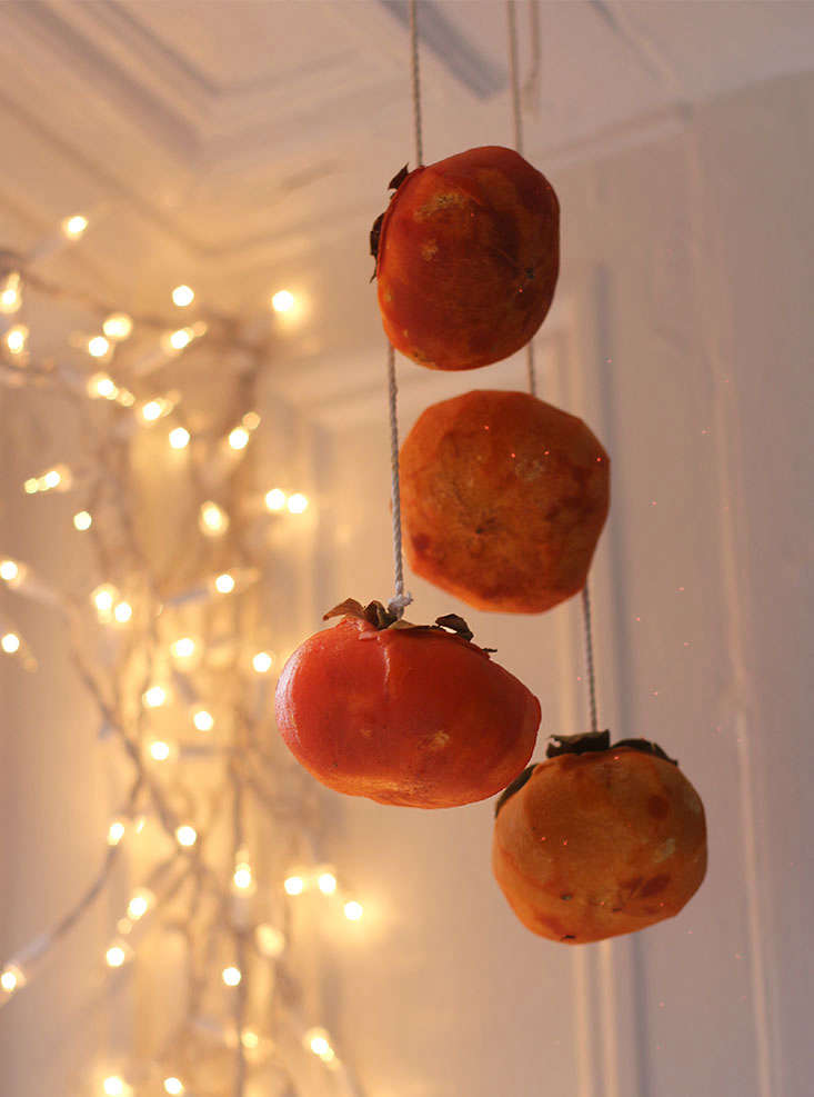 While the small American persimmons dry in about ten days, the larger Fuyus will take many weeks, aided by a light daily massage.
