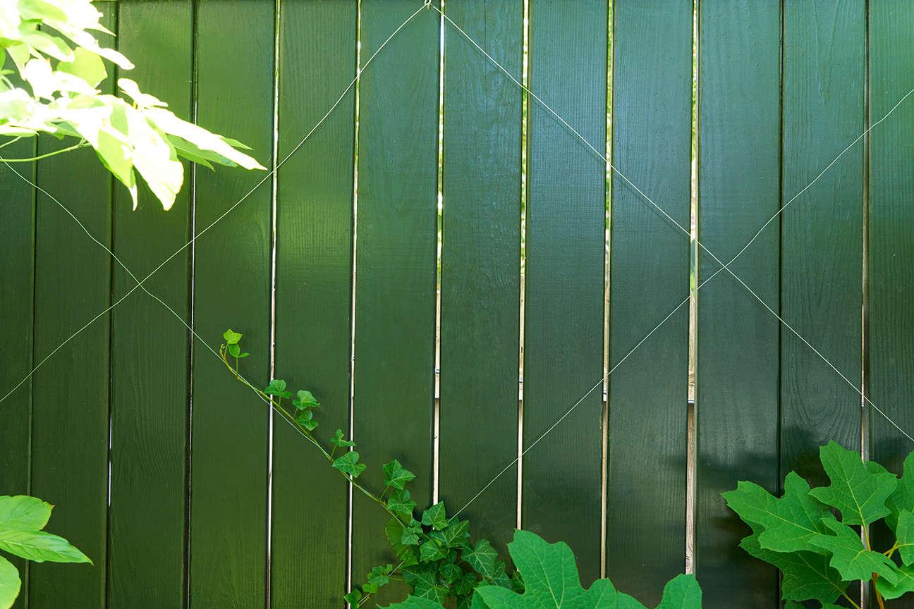 jen-catto-garden-brooklyn-fence-green-wire-trellis-douglas-lyle-thompson-DSC00864
