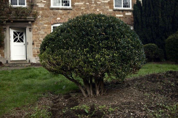nancy-lancaster-garden-northamptonshire-boxwood-topiary-shrub-jim-powell