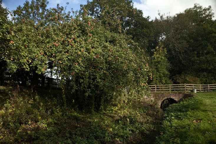 nancy-lancaster-garden-northamptonshire-bridge-river-orchard-jim-powell