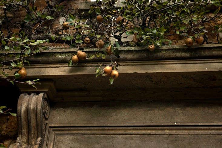 nancy-lancaster-garden-northamptonshire-pear-tree-entryway-facade-architectural-detail-jim-powell