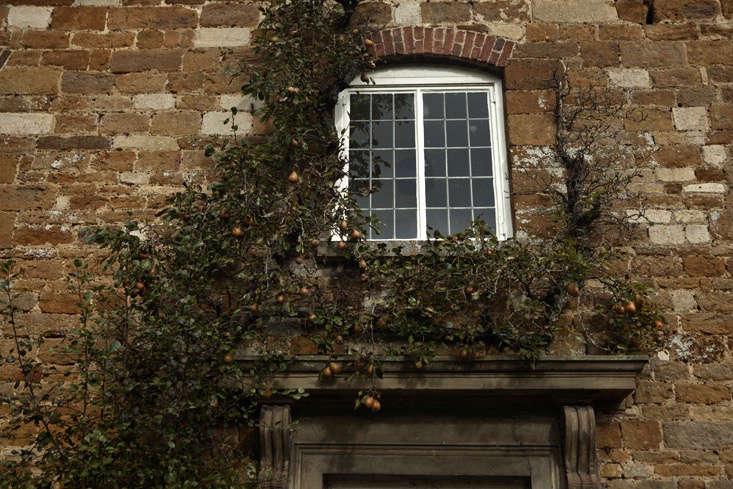 nancy-lancaster-garden-northamptonshire-pear-tree-facade-entryway-windows-jim-powell