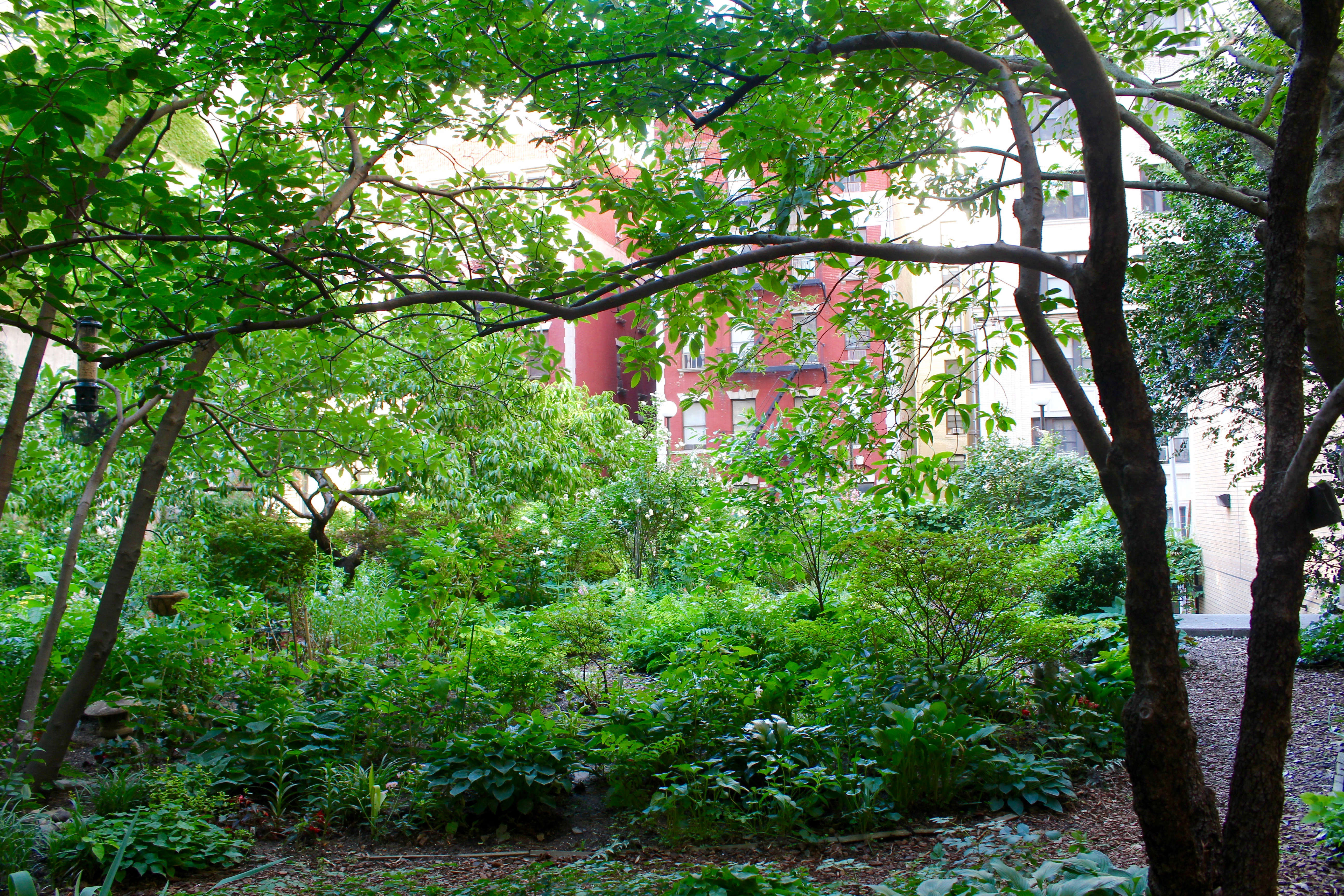 A late-spring view from the garden's southeast corner, looking north.