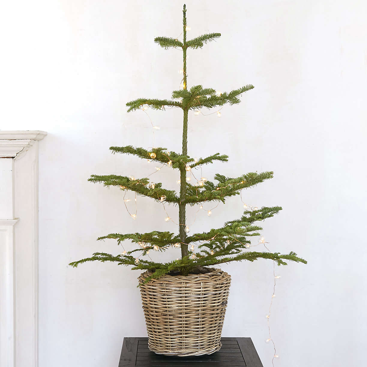 small-tabletop-noble-fir-christmas-tree-from-terrain