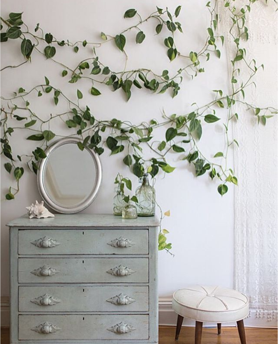 Photograph courtesy of Sprout Home.