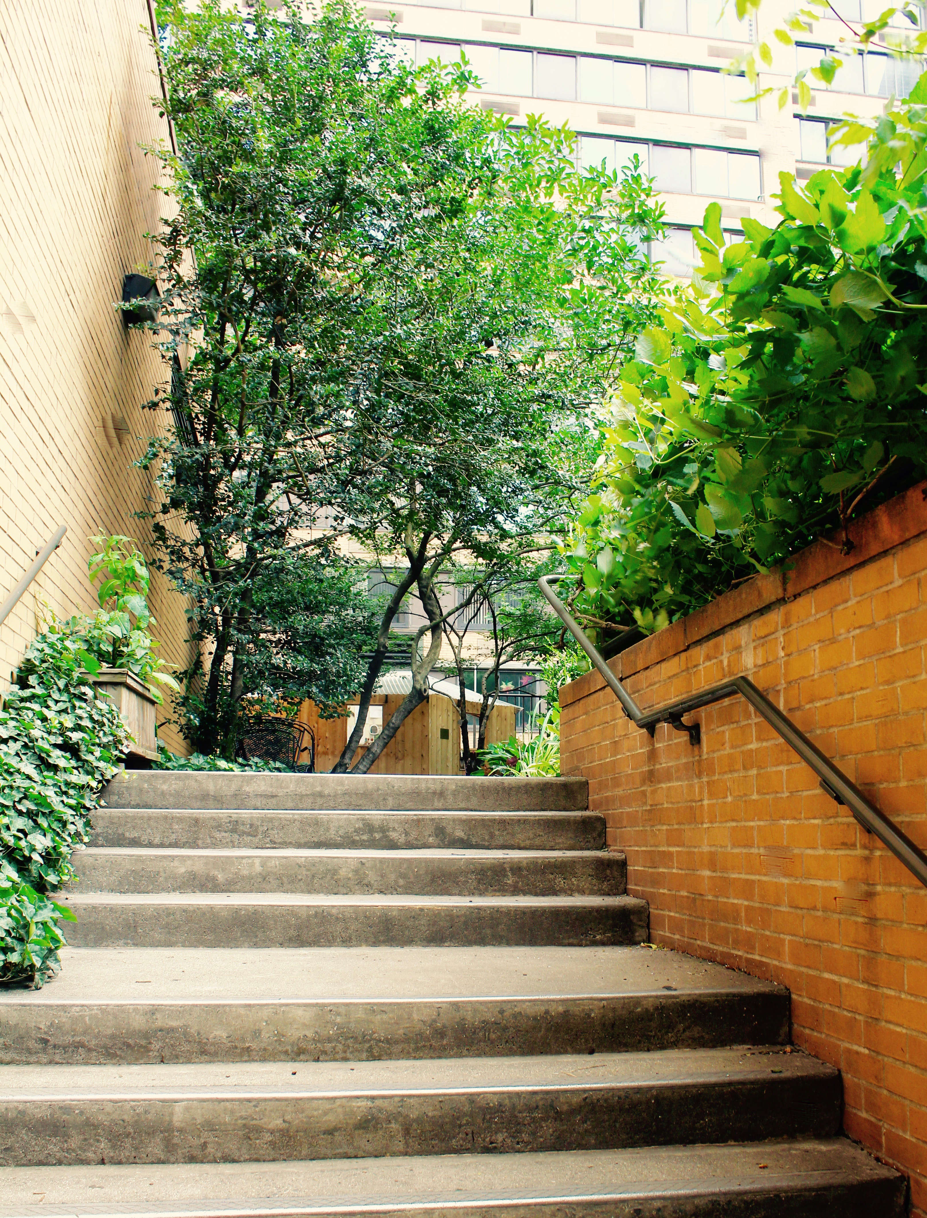 A cement staircase leads to the Lotus Garden, which is open to the public every Sunday from April to November, from \1 to 4 p.m. Many neighborhood residents, however, lease keys, coming and going as they please during daylight hours.