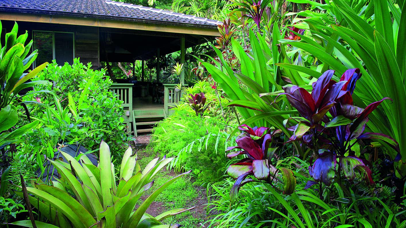 w-s-merwin-what-is-a-garden-book-house-facade-hawaii