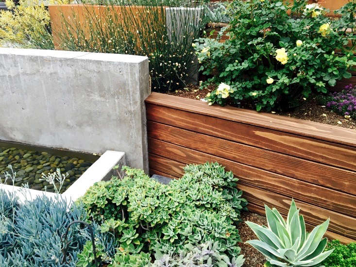 water-feature-concrete-retaining-wall-wood-succulents-kier-holmes