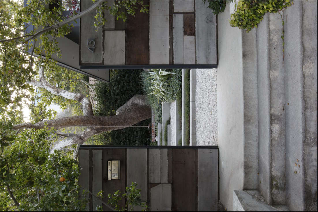 From the street, the garden radiates curb appeal, thanks to a majestic sycamore tree visible through (and above) the gate.