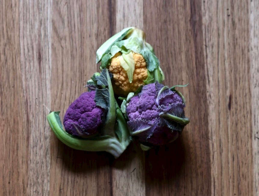 cauliflower-erin-boyle