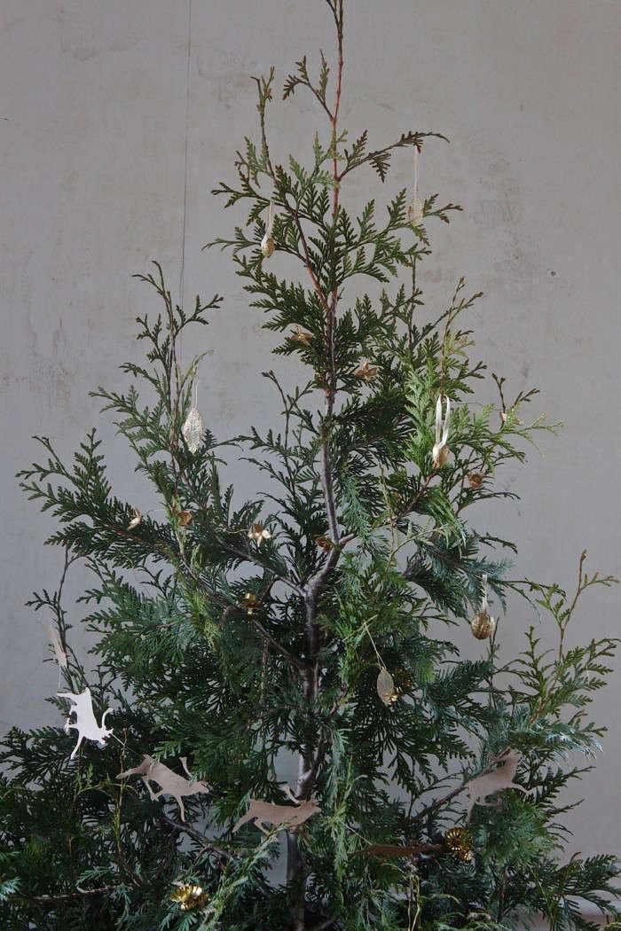 diy-live-christmas-tree-thuja-ornaments