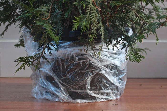 diy-living-christmas-tree-plastic-wrap