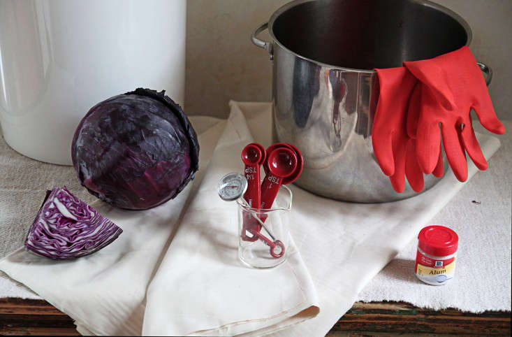 diy-red-cabbage-tadyed-tablecloth-materials