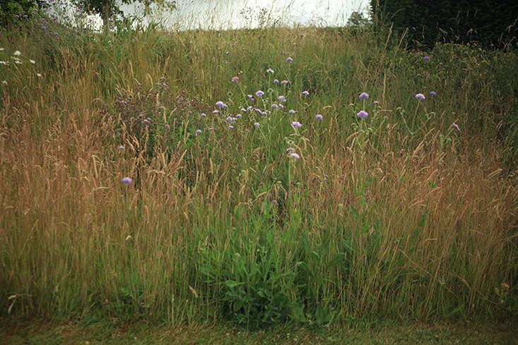 Gardening on a Slope, Easton Walled Gardens, Lincs, UK