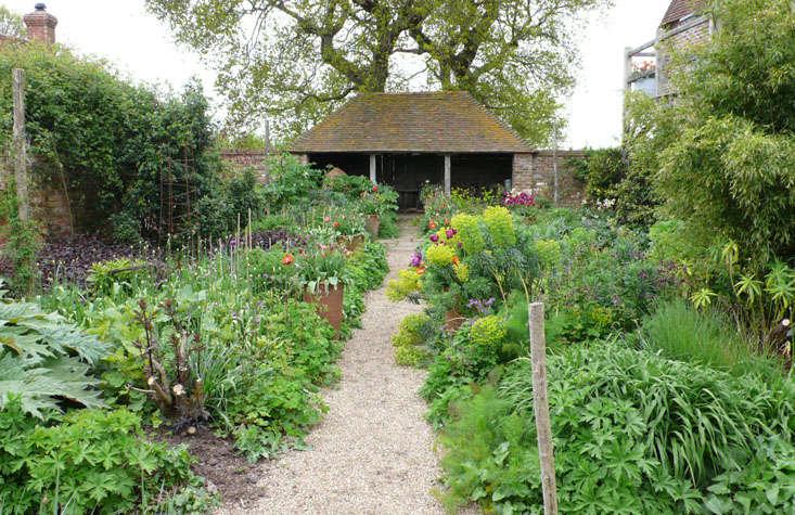 euphorbia-sarah-raven-oast-garden