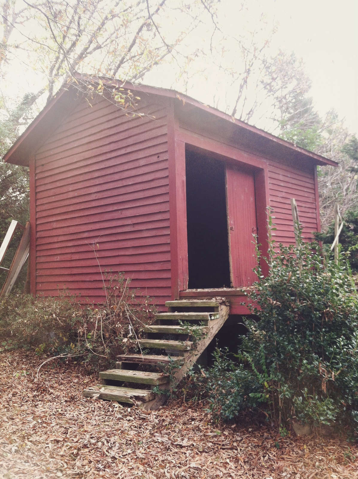 Good South Studio Found Shed, Photo by Chris and Elizabeth Boyette