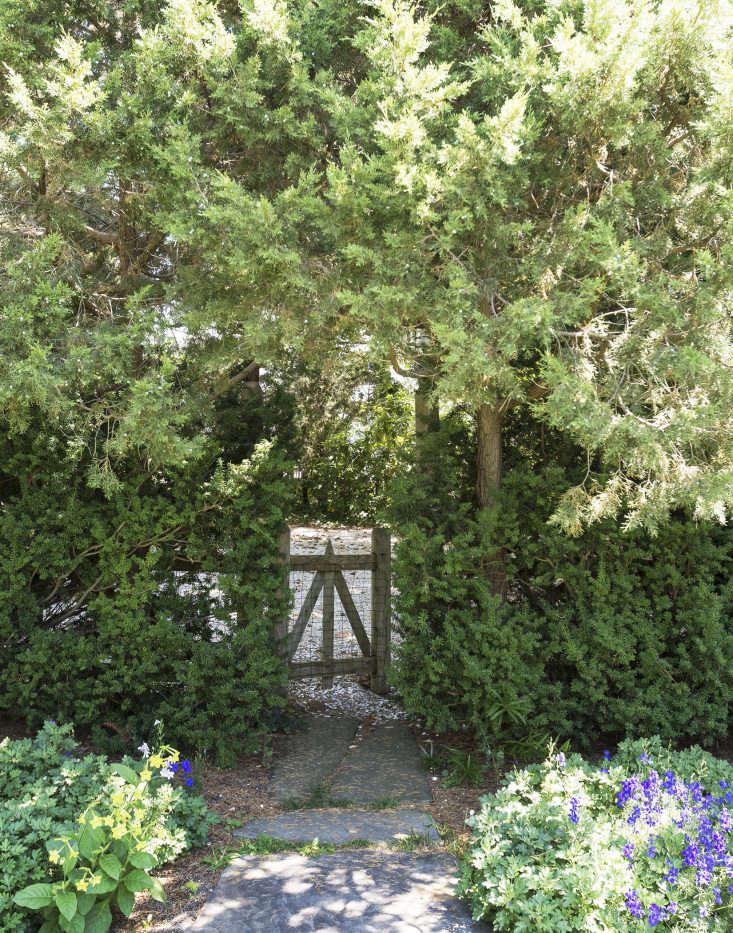 machado-silvetti-cape-cod-studio-garden-matthew-williams-dsc-7409-e1476210544637