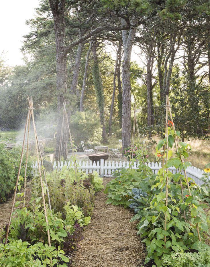 machado-silvetti-cape-cod-studio-garden-matthew-williams-dsc-7522-dsc-7465-e1476210815738