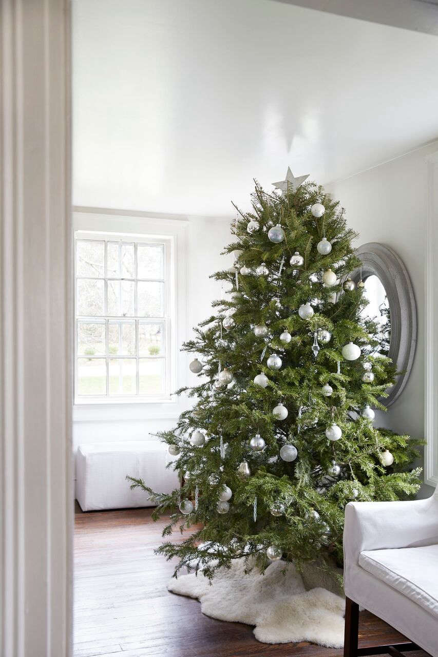 tricia-foley-christmas-tree-monochramatic