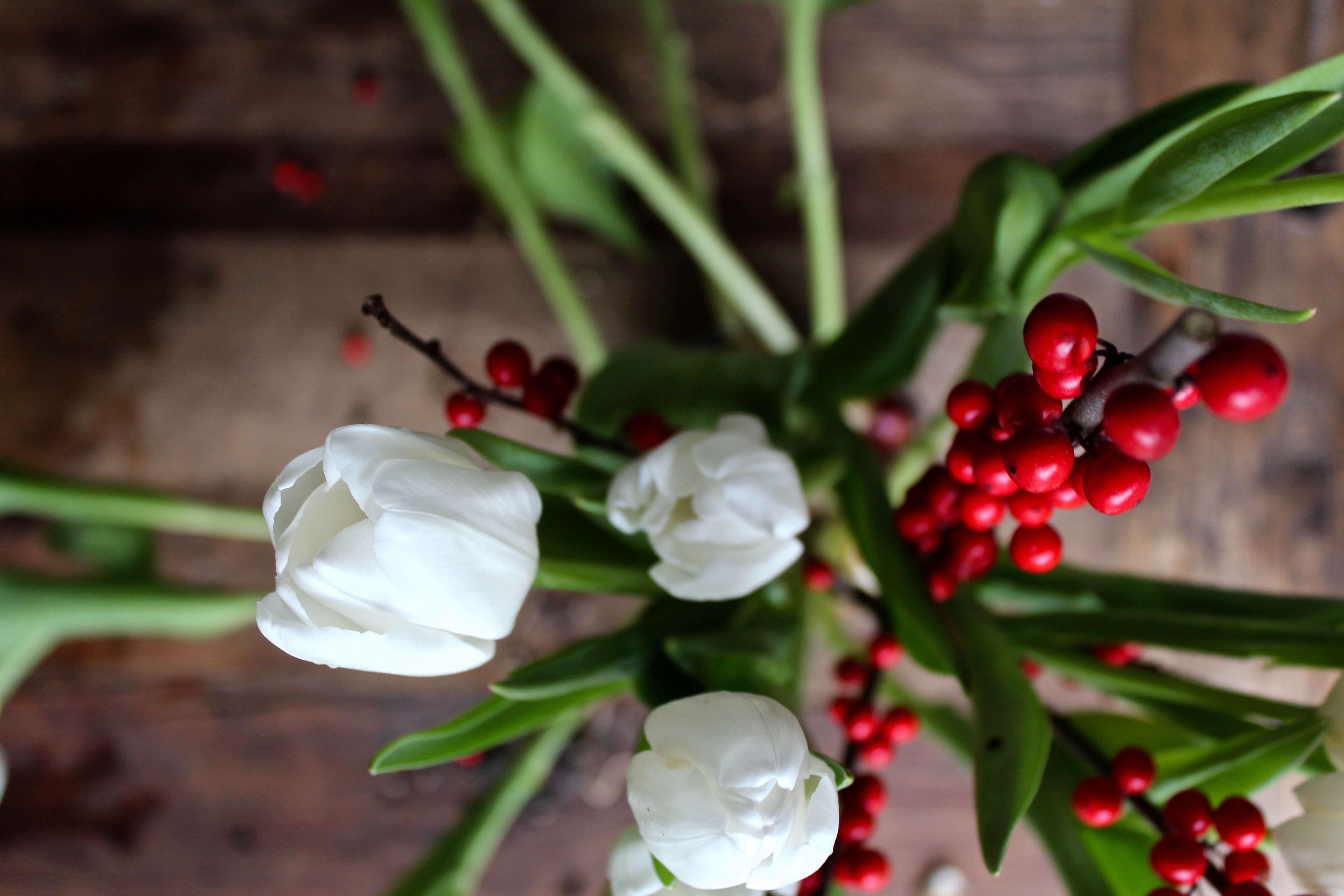 tulips-on-the-bulb-michelle-slatalla-img-3760